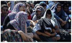 Alerta NATO: Teroriști ascunși printre imigranții din Europa. - Ştiri de Actualitate!
