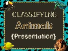 Super cute and it's FREE!  Must have for teaching about classifying animals!  She also has the matching guided notes AND test for FREE!  Topics Include: *Vertebrates and Invertebrates *Vertebrates Included: Fish, Amphibians, Reptiles, Birds, and Mammals *Vertebrate Characteristics (for each group): how they breathe, body covering, how they're born, body temperature. *Invertebrate Characteristics