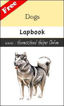 "This free dogs lapbook can help your student learn more about their ""best friend"" so they can better take care of their dog and train them. Project Based Learning, Student Learning, Lap Book Templates, Women In History, British History, Ancient History, American History, Native American, Children's Book Awards"
