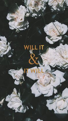 White roses floral Gold 'Will It' iphone background wallpaper phone lock screen