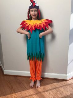 Moana Hei Hei HeiHei Rooster/Chicken Costume for Infants