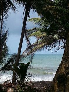 east coast, Humacao