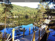 Garden Bridge, Outdoor Structures, Photo And Video, Facebook, Pictures