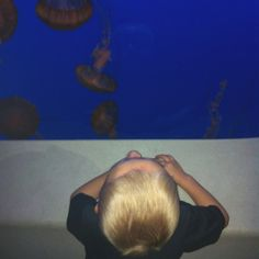 Henrik looking at the jellies at the #monterybayaquarium. #LifeProofBlue