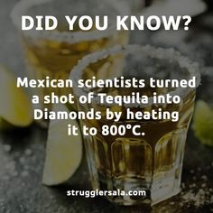 Aweessooommmeee get me all the tequilas in the world! Wow Facts, Real Facts, Wtf Fun Facts, True Facts, Amazing Science Facts, Some Amazing Facts, Unbelievable Facts, True Interesting Facts, Interesting Facts About World