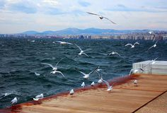 The waterfront of Thessaloniki.by Eleni Zorba The Greek, Seasons In The Sun, Macedonia Greece, Places In Greece, Thessaloniki, Main Street, Art And Architecture, Seaside, Past