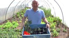 Piet Patron - Amazing vegetables from the garden of a Michelin star restaurant
