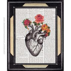 ANATOMICAL HEART illustration with vintage roses art print on old book page dictionary print love human heart 8x10, 5x7