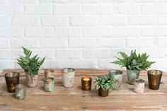 Accent Decor offers a wide selection of home décor, ceramics, glass vases and more for floral arrangements, events & weddings. Clear Glass Vases, Glass Votive, Simple Centerpieces, Wedding Centerpieces, Garden Theme, Ceramic Vase, Colored Glass, White Ceramics, Floral Wedding
