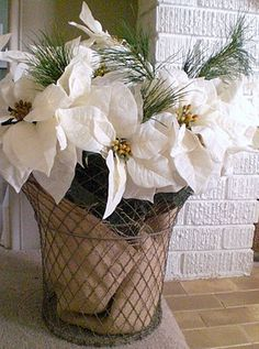 vintage wire basket, white poinsettias...Dollar Tree has the clip on White ones. Burlap lined in the basked, greenery, than clip on the poinsettias.....Cheap, elegant decor