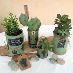 1 million+ Stunning Free Images to Use Anywhere Tin Can Crafts, Diy And Crafts, Tin Can Centerpieces, Decoupage Tins, Recycled Planters, Chicken Crafts, Recycle Cans, Plant Projects, Cute Room Decor