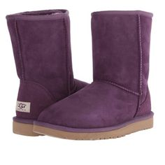 Brand new classic short UGG boots New in box UGG Shoes Winter & Rain Boots