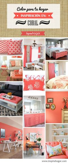 10 color coral beach home items