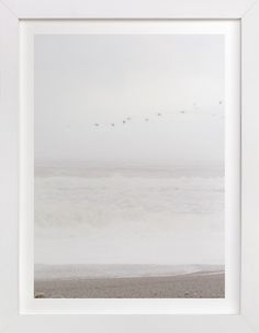 Flight of the Ocean by Sharon Rowan at minted.com