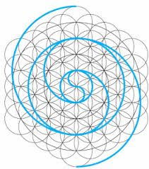 Resultado de imagem para geometria sagrada espiral
