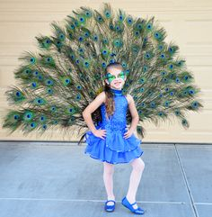 Pretty Peacock Instructions to make your own are here: http://ideas.coolest-homemade-costumes.com/2012/10/31/best-homemade-peacock-costume-six-year-old-girl/