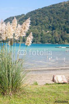 """Téléchargez la photo libre de droits """"Lac de Paladru à Chavarines"""" créée par Aurélien Antoine au meilleur prix sur Fotolia.com. Parcourez notre banque d'images en ligne et trouvez l'image parfaite pour vos projets marketing !"""