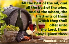 Numbers 18:2