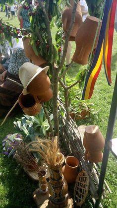 Type 3, Facebook, Plants, Photos, Pictures, Flora, Plant, Planting, Cake Smash Pictures