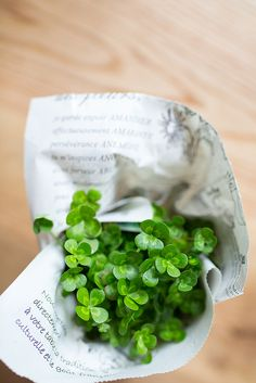 small bouquet of 4-leaf clovers for good luck :)