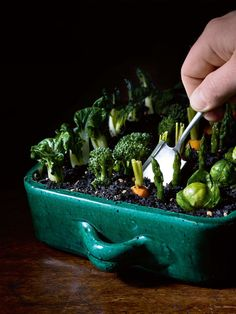 A fun way to serve up some veg...all you can eat