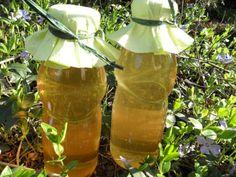 Mason Jar Wine Glass, Glass Vase, Edible Flowers, Preserves, Pickles, Summertime, Canning, Healthy, Tableware