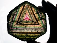 Rare cross section of tourmaline / Mineral Friends <3