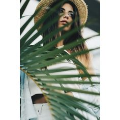 PALMS AUSTRALIA DULCEIDA.COM ❤ liked on Polyvore featuring people, backgrounds, models, photo and summer
