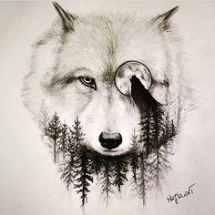 K?t qu? hình ?nh cho desenhos de lobos realistas