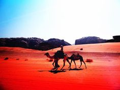 That's me!  Riding a camel  in Wadi Rum. Wadi Rum is an unusual area where crumbling rocky hills meet red orange and yellow sand. A week in Jordan - incredible. This is our 5th year of nomadic life.  NUMBER ONE Single Parent Travel Blog (Nomadic) NUMBER T