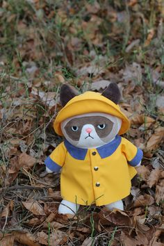 Fair Weather Grumpy Cat