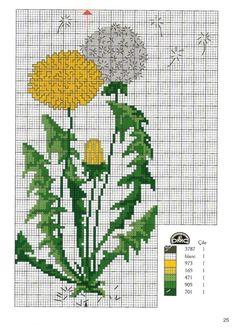 Gallery.ru / Фото #23 - Kanavice la naturaleza y las flores 1 de octubre 2010 - Chispitas