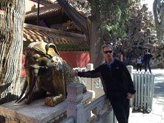 China Trip, China Travel, Horses, Animals, Animales, Animaux, Horse, Words, Animal