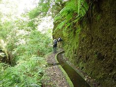 Lombo Urzal - Fajã Penedo by Madeira Islands Tourism, via Flickr