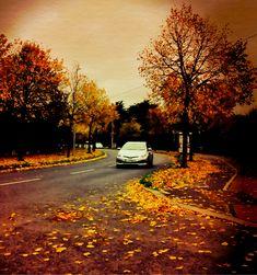 Ireland, Country Roads, Places, Photography, Travel, Photograph, Viajes, Fotografie, Photoshoot