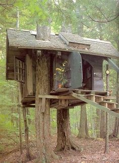 "An adorable ""cottagey"" treehouse ~ looks safe. kn"