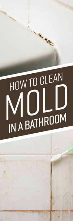 It is common to find mold growing in bathroom areas like showers and sinks. The fungus can grow on just about any surface as long as it is coated with organic Cleaning Crew, Car Cleaning Hacks, Deep Cleaning, Spring Cleaning, Natural Cleaning Solutions, Natural Cleaning Products, Mold In Bathroom, Bathroom Cleaning, Oven Cleaner