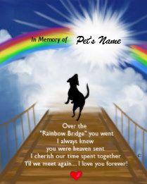 Rainbow Bridge Memorial Poem For Dogs Plaque Rainbow Bridge