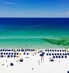 38 Best Florida Real Estate Audrey Price Realtor 850