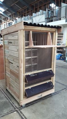 Pigeon Nest, Pigeon Cage, Pigeon Loft Design, Racing Pigeon Lofts, Heritage Chickens, Quail Coop, Pigeon House, Dove House, Homing Pigeons