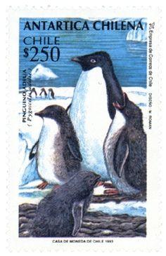 Chilean Antartic. Postal Stamp More about stamps: http://sammler.com/stamps/