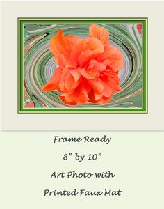 "$20. FRAME READY PHOTO ART. 28 Different Original design fine art photography prints. This artwork fits easily into a standard 8"" x 10"" frame. The color-coordinated mat is printed right around the picture. Your finished artwork will be ready to hang or give as a gift in minutes. Original design work and printing is done in my studio. You can go to the shop's Frame Ready Photo Art section by clicking on the following link: https://www.etsy.com/shop/VintageArtForLiving?section_id=20294413"