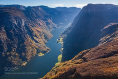 Fall by espenhaagensen. Please Like http://fb.me/go4photos and Follow @go4fotos Thank You. :-)