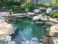 Natural Swim Ponds with Natural Boulders - Splash Supply Company Natural Swimming Ponds, Natural Pond, Swimming Pools Backyard, Swimming Pool Designs, Lap Pools, Indoor Pools, Pool Decks, Swimming Pool Waterfall, Backyard Pool Designs
