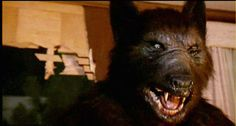 The werewolf movie. A genre that has stuttered its way through the decades with films ranging from the sublime (An American Werewolf In London) to the Best Werewolf Movies, Werewolf Art, Scary Movies, Werewolf Legend, Horror Films, Horror Stories, Stephen King Movies, Roman, American Werewolf In London