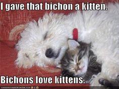 #adorable!!!