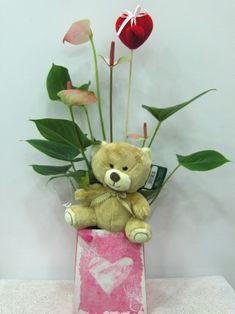 Valentine plants Anthurium love teddy bear. Available  for Athens -Attiki    Φυτό εσωτερικού χώρου Ανθούριο  45 εκ ύψους συνοδεύεται με αρκουδάκι  www.flowers4u.gr