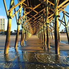 """""""I want one moment in time when I'm more than I thought I could be, when all of my dreams are a heartbeat away and the answers are all up to me"""" - Whitney Houston #pier #beach #eastcoast #edgeofamerica #follybeach #explorecharleston #charlestonsc #charlestondaily #charleston #journey #ocean #discovercharleston #southernliving #southcarolina"""
