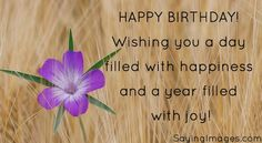 happy birthday quotes: http://sayingimages.com/happy-birthday-quotes/