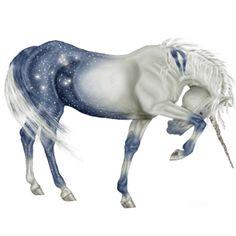 Unicorn Shetland Cherry bay